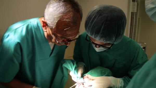 ひのまる歯科 インプラント 留学➀